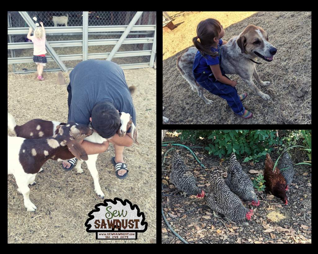Sew Sawdusts farm animals, husband hugging a goat, child with large dog and chickens looking for food